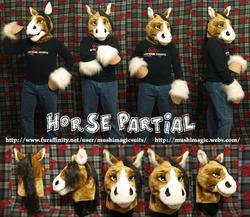 Horse Partial: 2013