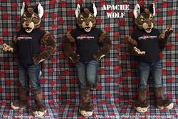 Apache: 2013