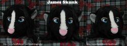 James Skunk: 2012