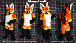Maned Wolf: 2013