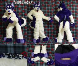 Purple Husky: 2012