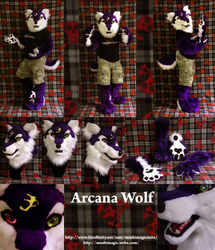 Arcana Wolf: 2012