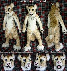 Snickerdoodle Cheetah: 2012