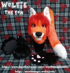Wolfie The Fox 2013