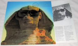 Hot In The Shade LP