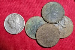 Finds from a new site!