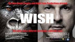 WISH (2011)