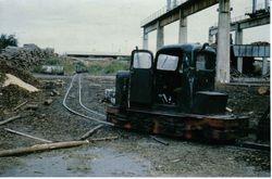 Pedershaab 1976