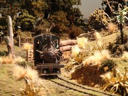 Heisler loco exits the forest with a rake of logs