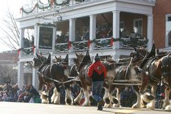 Christmas Parade with Show Hitch Wagon