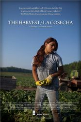 The Harvest: Poster
