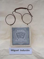 Miguel Indurain - bike
