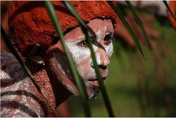 Mambucal Mudpack Festival