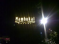 Mambucal Lights