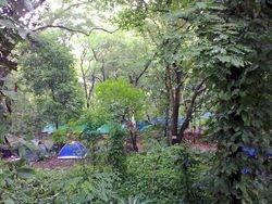 Mambucal Camping Ground