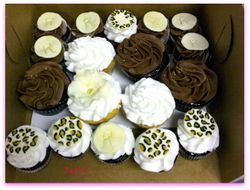 Assorted Animal Print Birthday Cupcakes