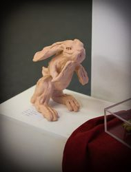 Pink Rabbit by Rona Sissons