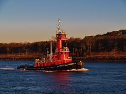 Tug In Cape Cod Canal