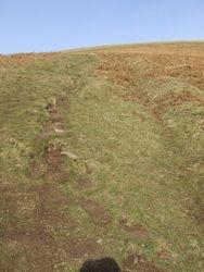 Well worn foot imprints