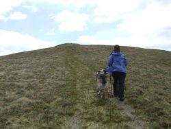 Ridge path