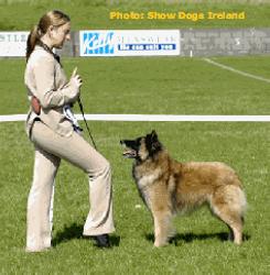 Sligo Ch. Show July 05