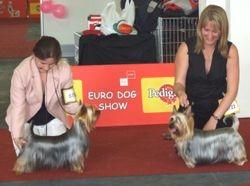 European Show Croatia 9/06/07