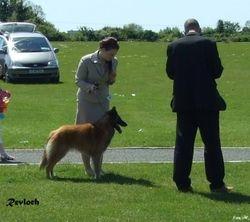 24/05/09 BSD Club of Ireland Speciality