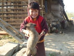 Kyaw Laing's son and his long-suffering puppy.