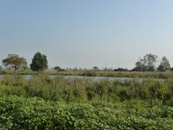 The lake upon which Kyaw Laing claimed first to see a Pink-headed Duck.
