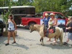 Pony Rides at Stampede Days