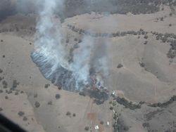 Grass Fire 2008