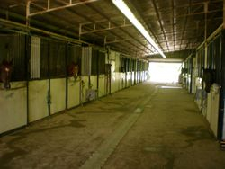 Hall of main barn