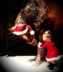 Kenna Christmas 2013