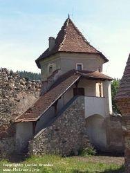 Foto: www.hoinari.ro