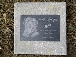 Tomb stone of Aki Hofer