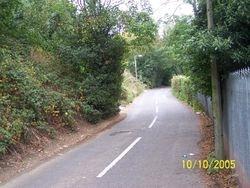 Yew Tree Lane