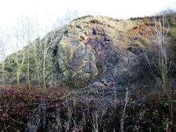 Outcrop of Rowley Rag