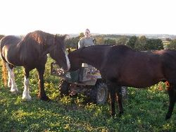 Thyme & Tess Sharing a Meal