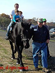 Percheron Rick and dad with 2 boys