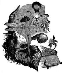 Ex libris Marina Terauds