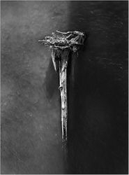 Crucifixion of Tree