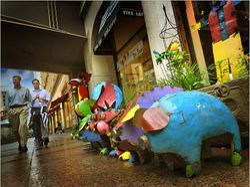 The Pigs Parade