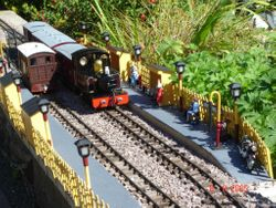 Trains passing at 'Avonmead' on a glorious summer's day