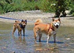Kieko & Hiru Wadding
