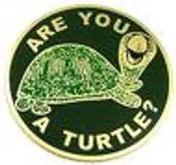 R U a Turtle?