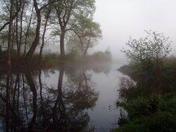 Misteriozni pejzazi u magli