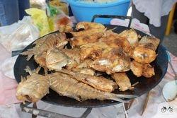 Riba sa tanjirace