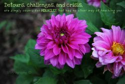 Detours and Challenges