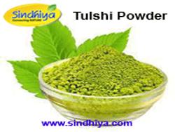 Tulshi Powder