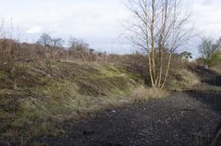 Mound showing where the platforms once stood